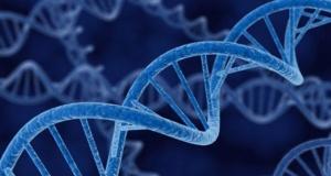 Scientists Rename Genes So Excel Won't Reformat Them as Dates